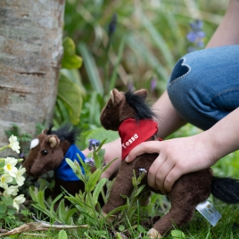 Personalised Horse / Pony Soft Toy