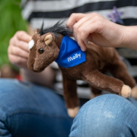 Personalised Horse / Pony Soft Toy